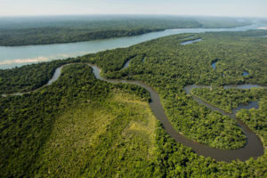 The Amazon Rainforest is a national treasure